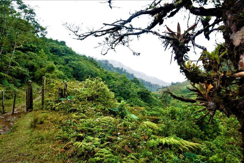 Paisaje hermoso en Juan Castro Blanco National Park fotos de archivo