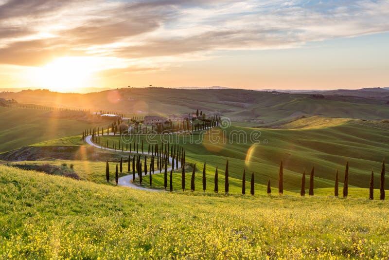 Paisaje hermoso - Toscana foto de archivo libre de regalías