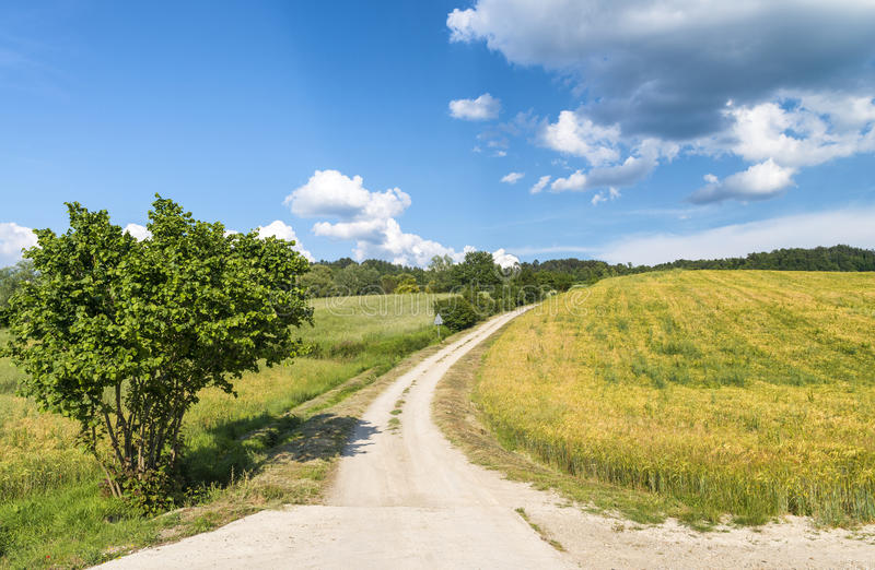 Paisaje hermoso y colinas en Toscana, Italia fotografía de archivo