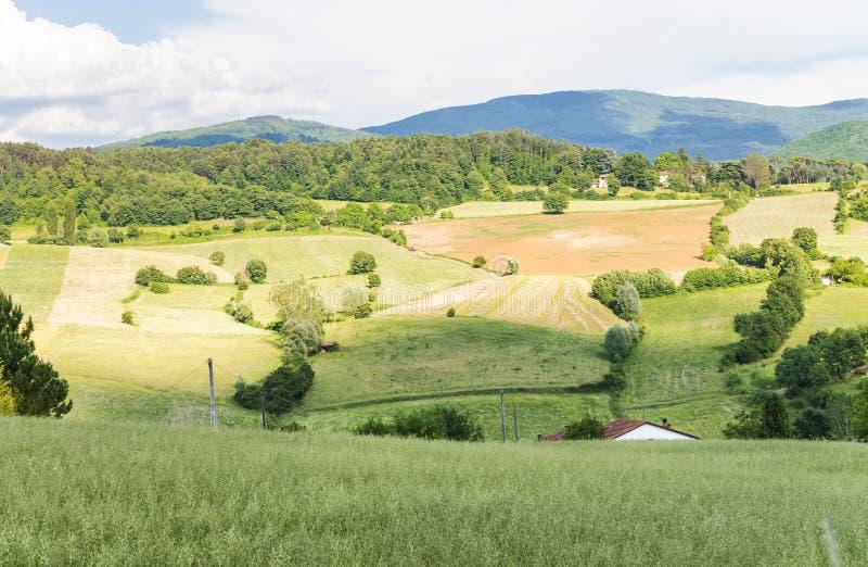 Paisaje hermoso y colinas en Toscana, Italia foto de archivo libre de regalías