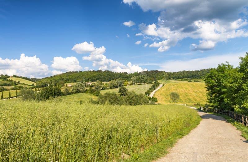 Paisaje hermoso y colinas en Toscana, Italia foto de archivo