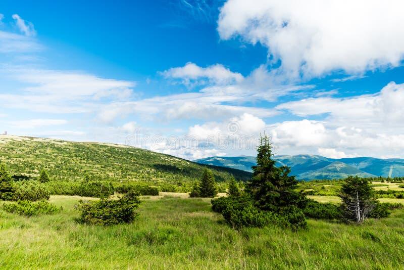 Paisaje hermoso y prado de la montaña imagen de archivo libre de regalías