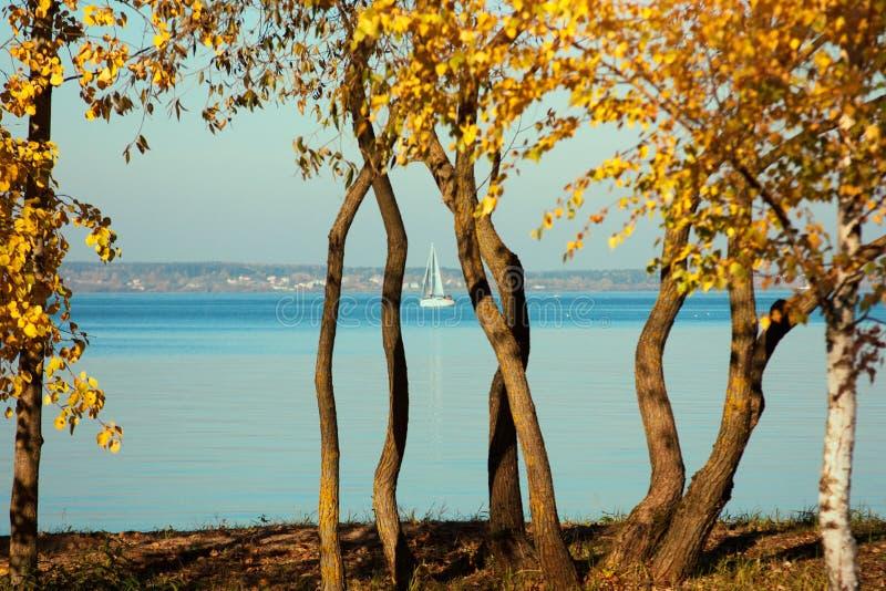 Paisaje hermoso, yate, pájaros y puesta del sol del lago Línea azul de las ondas, del barco y del horizonte en el agua foto de archivo libre de regalías