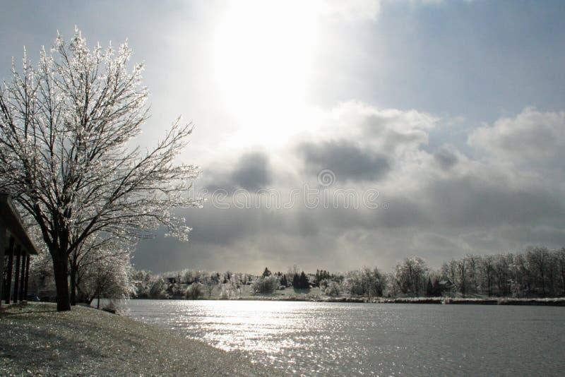 paisaje Hielo-cubierto a lo largo del río magnífico imágenes de archivo libres de regalías