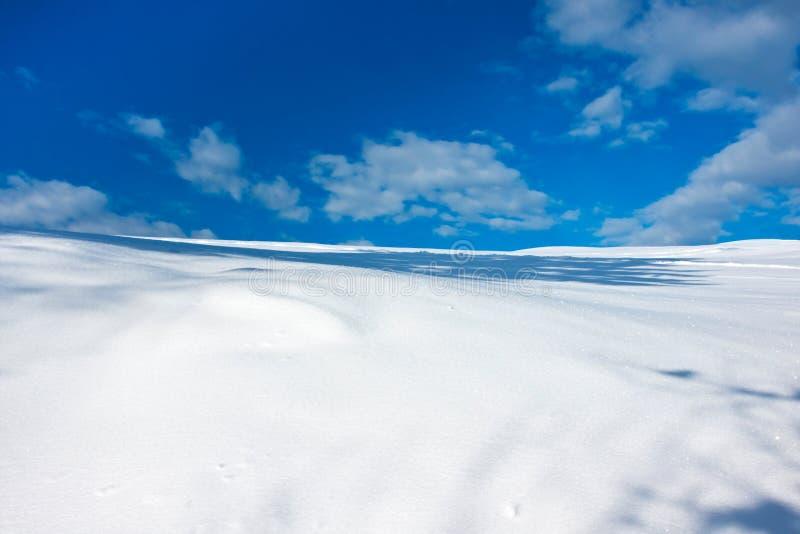 Paisaje hivernal foto de archivo libre de regalías