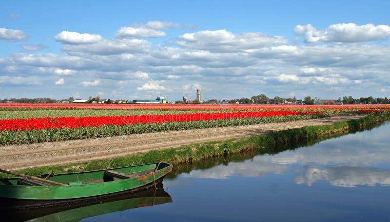Paisaje holandés imagen de archivo libre de regalías
