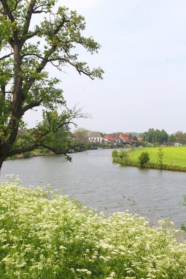 Paisaje holandés con el río de Linge en el Betuwe fotografía de archivo libre de regalías