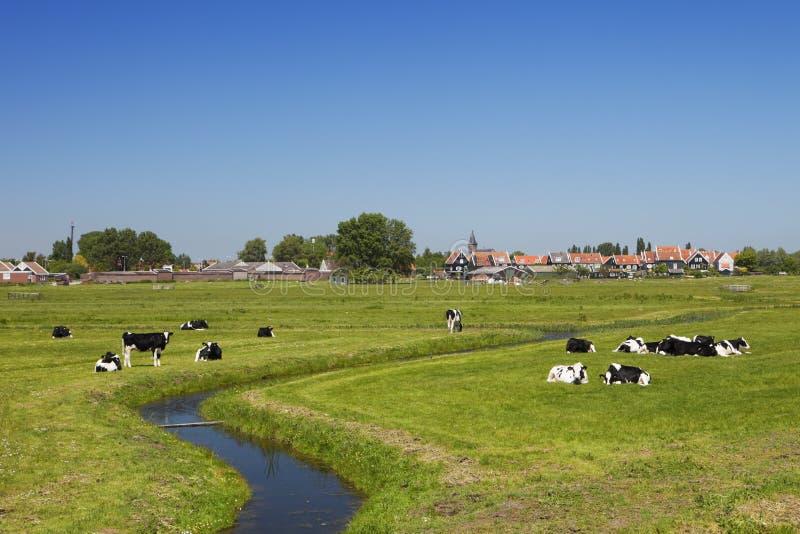 Paisaje holandés del país en un día soleado claro imagen de archivo
