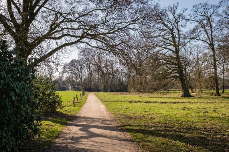 Paisaje holandés típico de la primavera en marzo cerca de Delden Twente, Overijssel fotos de archivo