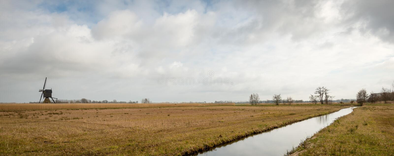 Paisaje holandés típico del pólder en el final del invierno fotografía de archivo libre de regalías
