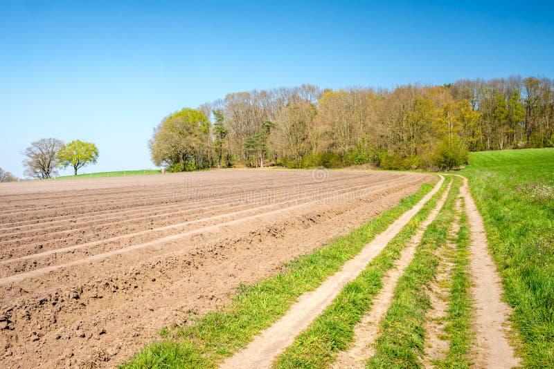 Paisaje holand?s t?pico de la granja cerca de Markelo Twente, Overijssel, los Pa?ses Bajos imagenes de archivo