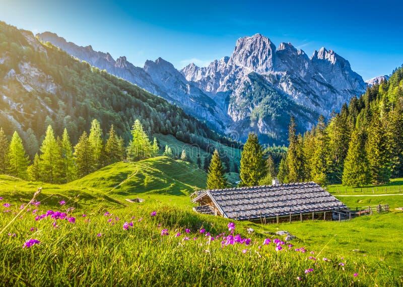 Paisaje idílico de la primavera en las montañas con el chalet tradicional de la montaña fotos de archivo