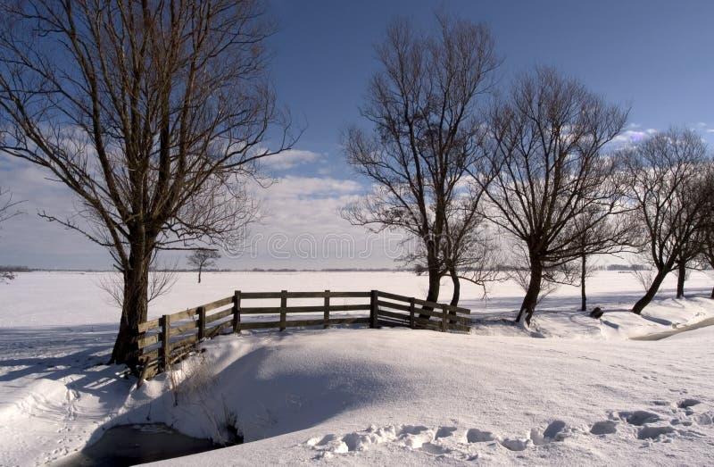 Paisaje II del invierno imagen de archivo