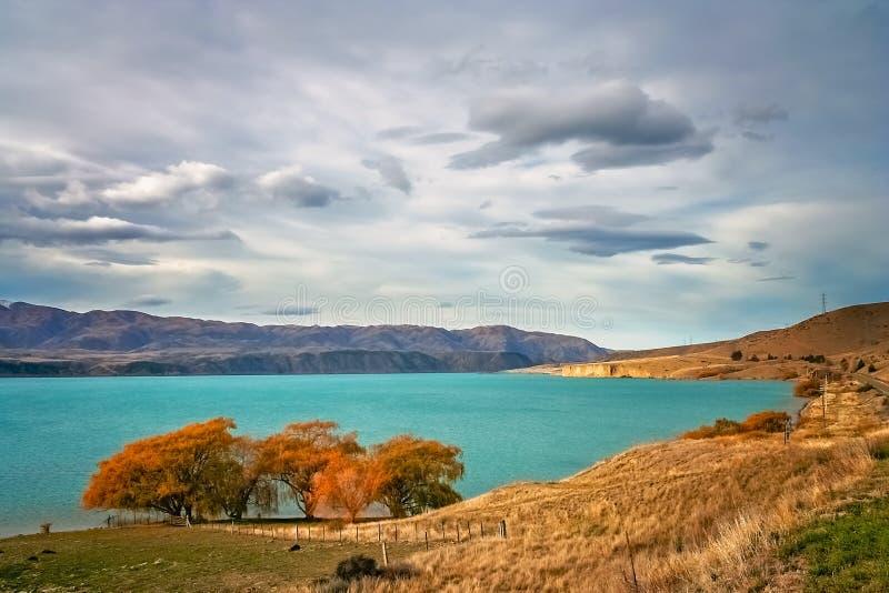 Paisaje imponente del lago del torquise en Nueva Zelanda fotografía de archivo