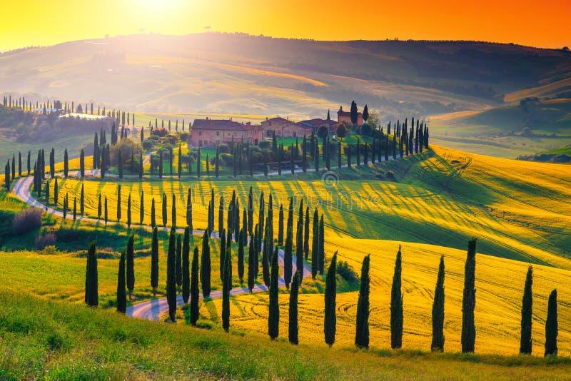 Paisaje impresionante de Toscana con los árboles curvados del camino y de cipreses, Italia fotos de archivo