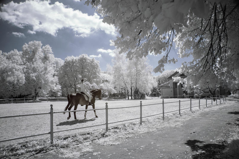 Paisaje infrarrojo fotos de archivo