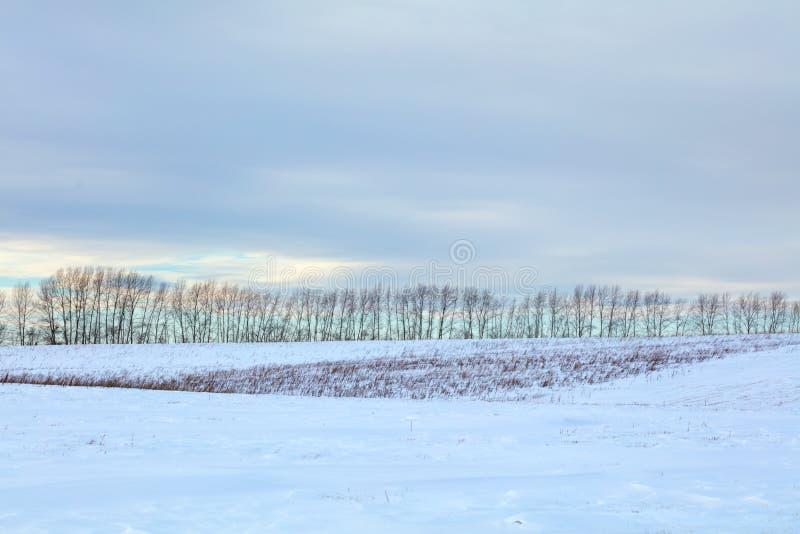 Paisaje invernal Día frío La temporada de nieve foto de archivo libre de regalías