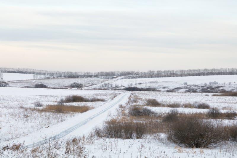 Paisaje invernal Día frío La temporada de nieve fotos de archivo libres de regalías