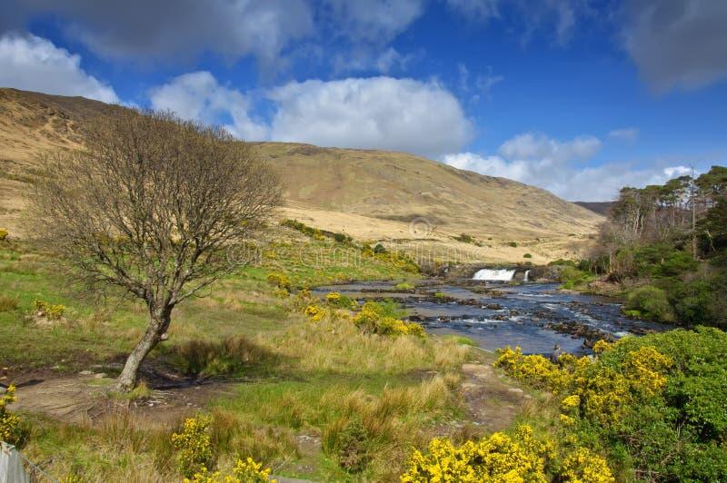 Paisaje irlandés rural de la fotografía de Irlanda imágenes de archivo libres de regalías