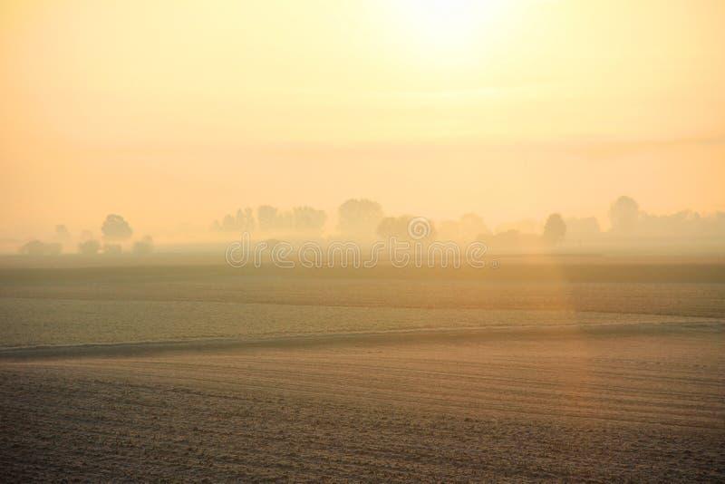 Paisaje ligero de la mañana en los campos imágenes de archivo libres de regalías