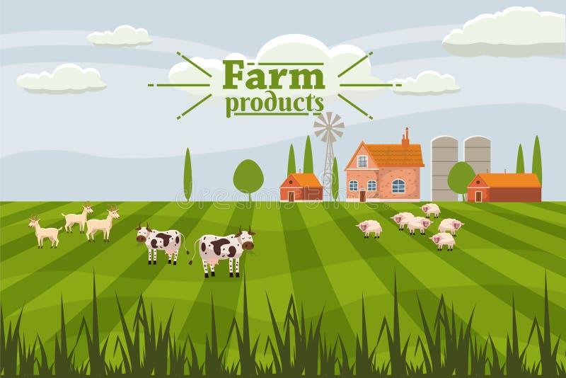 Paisaje lindo rural con las vacas de la granja y de la manada Estilo de la historieta, vector, aislado stock de ilustración