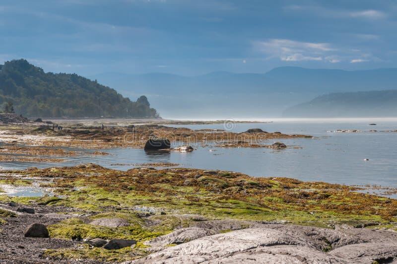 Paisaje a lo largo de la orilla del agua imagen de archivo libre de regalías