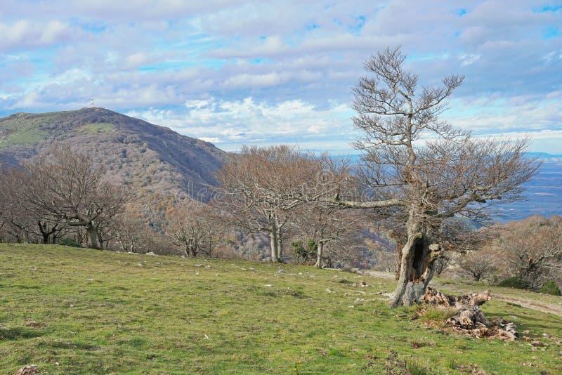 Paisaje los Pirineos Orientales de la montaña de Francia fotografía de archivo libre de regalías