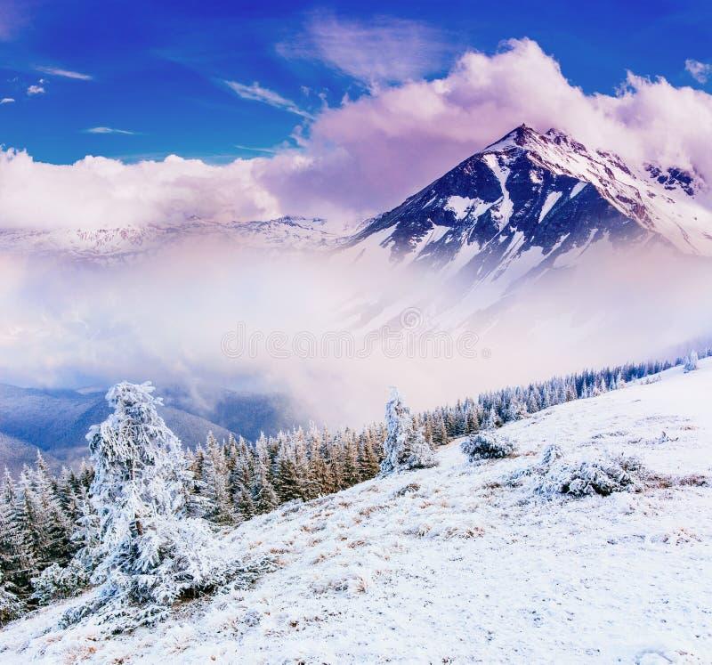 Paisaje mágico del invierno foto de archivo libre de regalías