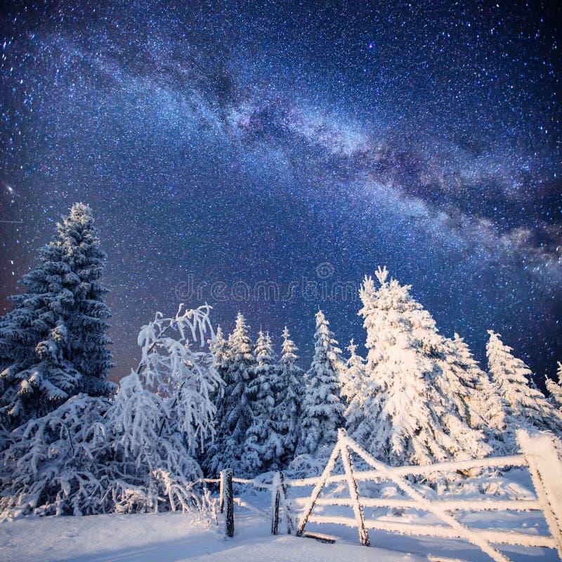Paisaje mágico del invierno Cárpatos, Ucrania, Europa foto de archivo libre de regalías