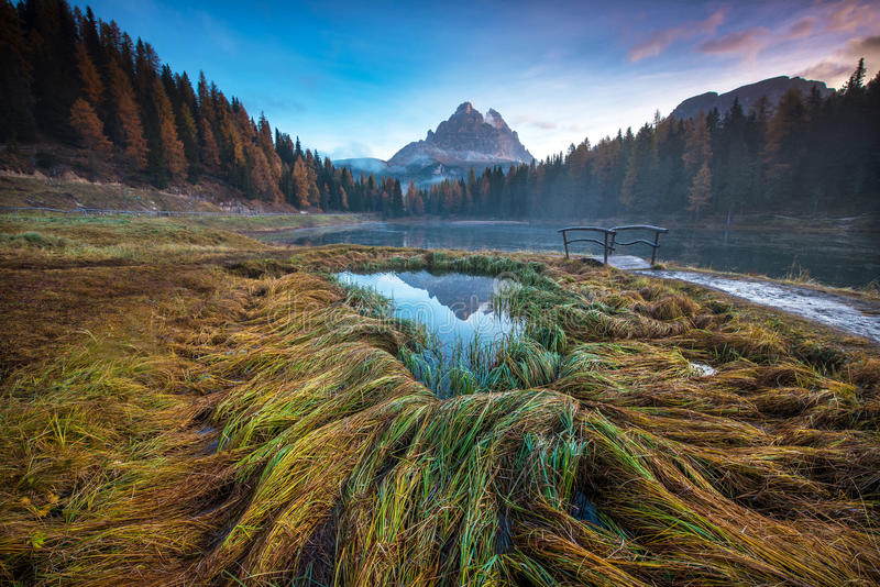 Paisaje místico con la hierba del otoño y el puente de madera coloreados en imagen de archivo libre de regalías
