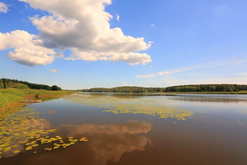 Paisaje magnífico de la naturaleza en un día de verano Pintura y césped verde, superficie del agua del espejo y cielo azul con la foto de archivo