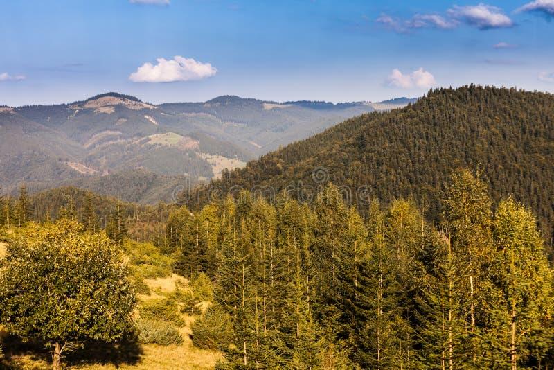Download Paisaje Majestuoso De Las Montañas Con Las Hojas Verdes Frescas Imagen de archivo - Imagen de prado, fondo: 44852979