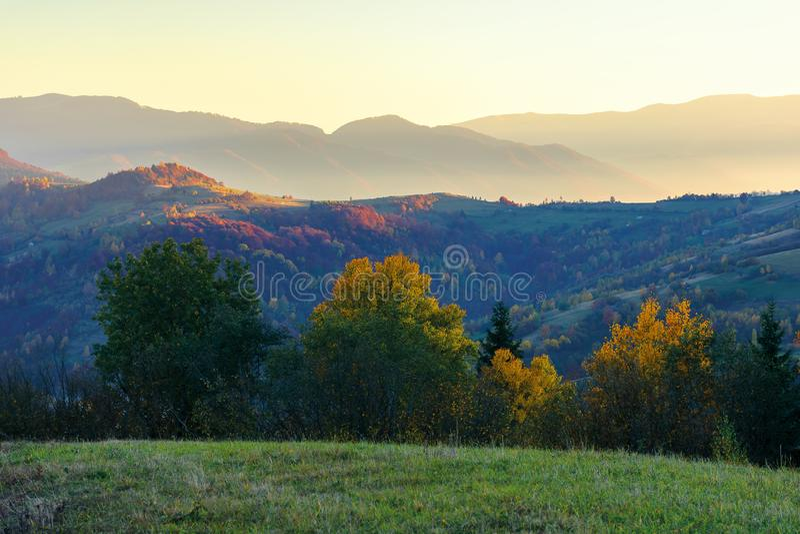 Paisaje maravilloso del otoño en el amanecer fotografía de archivo libre de regalías