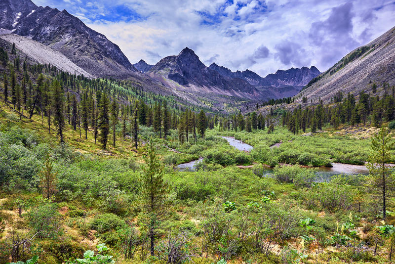 Paisaje maravilloso del verano en las montañas de Siberia del este foto de archivo