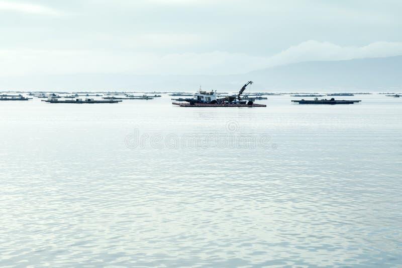 Paisaje marina Barco del mejillón que trabaja cerca de camas de mejillón en el mar foto de archivo