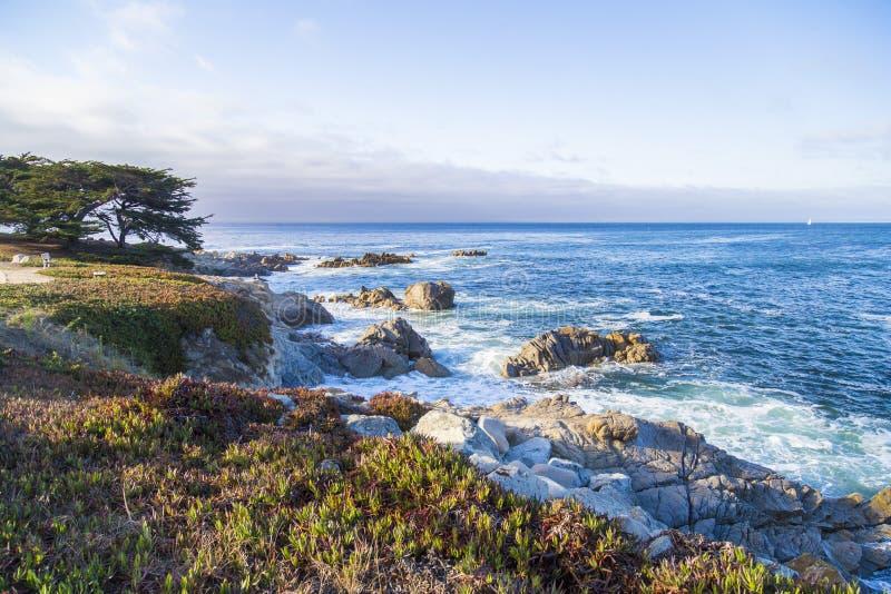 Paisaje marino de la bahía de Monterey en la puesta del sol en la arboleda pacífica, California, los E.E.U.U. imágenes de archivo libres de regalías