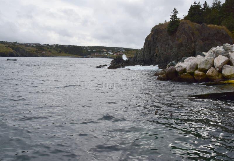 Paisaje marino del otoño en la costa de Killick fotos de archivo libres de regalías