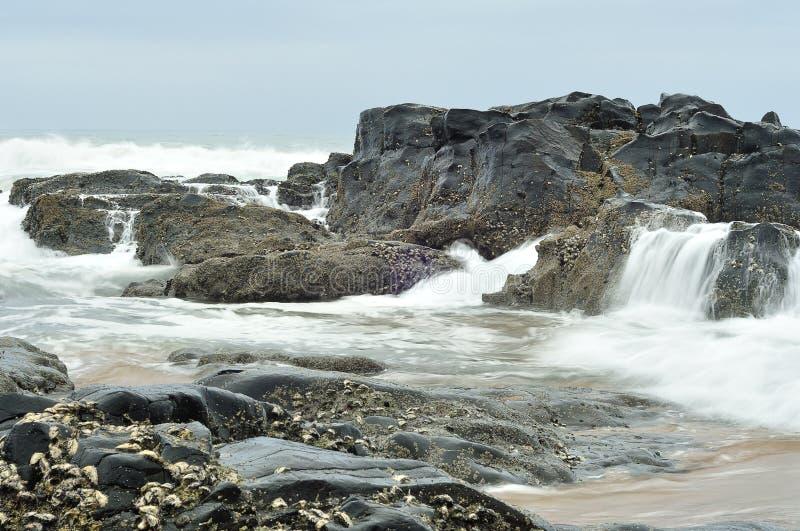 Paisaje marino en Suráfrica imagen de archivo
