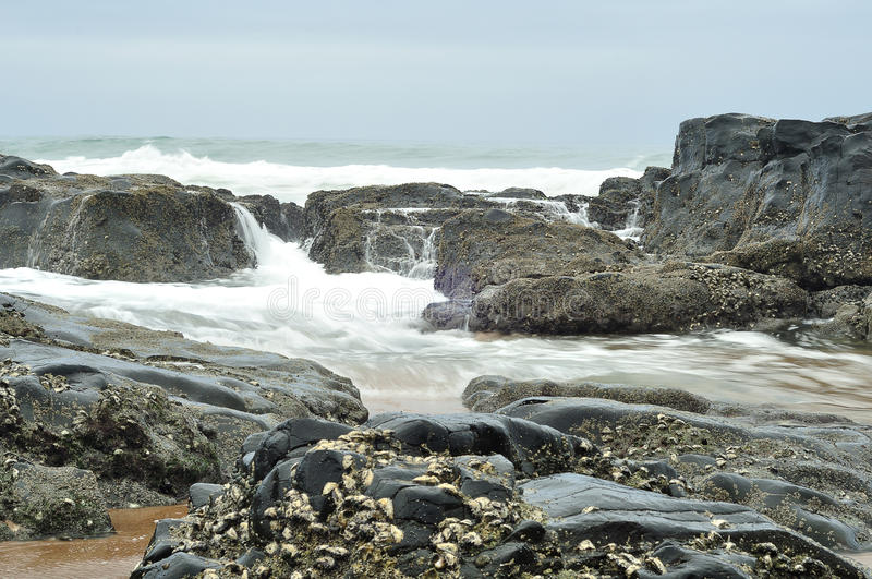 Paisaje marino en Suráfrica fotografía de archivo