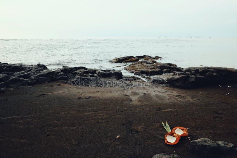 paisaje marino ideal tropical del paraíso del Océano Pacífico de la orilla con las rocas y arena negra volcánica y un coco abiert fotos de archivo libres de regalías