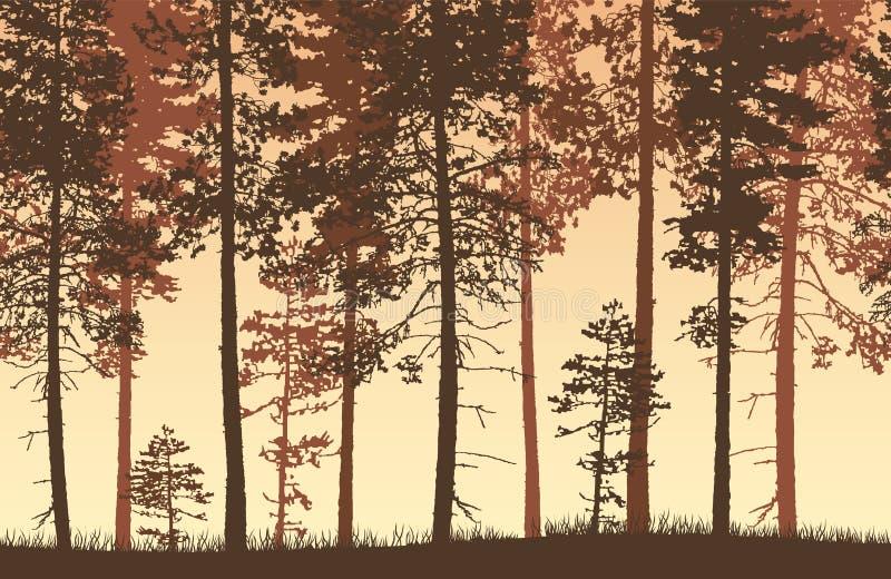 Paisaje marrón y amarillo inconsútil del bosque del vector con coniferou stock de ilustración