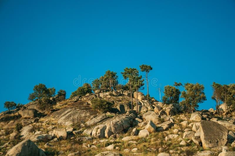 Paisaje montañoso cubierto por las rocas y los árboles en puesta del sol fotografía de archivo libre de regalías