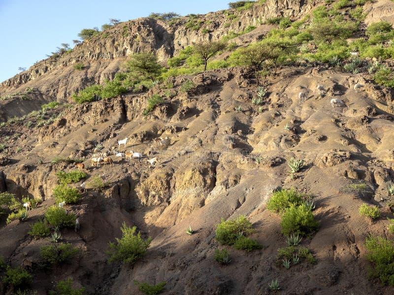 Paisaje montañoso en Etiopía septentrional fotografía de archivo
