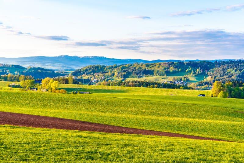 Paisaje montañoso verde con las montañas gigantes, Checo: Krkonose, en horizonte, República Checa fotos de archivo libres de regalías