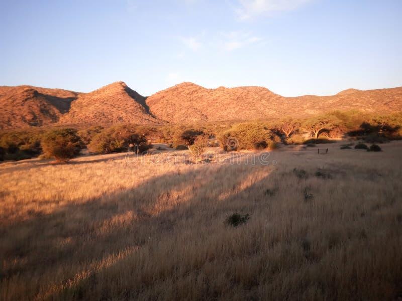 Paisaje namibiano foto de archivo libre de regalías