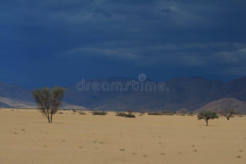 Paisaje namibiano fotos de archivo