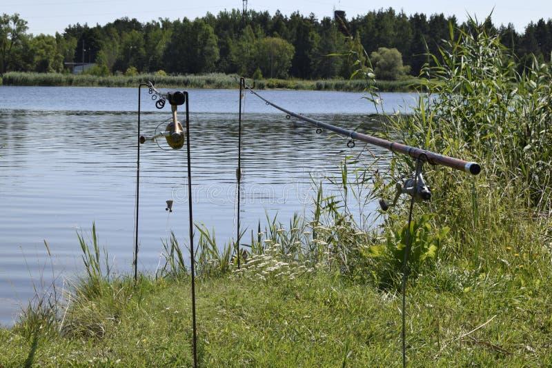 Paisaje natural de Bielorrusia, de Rusia y de Países Bálticos Verano, día, río Se establecen las cañas de pescar fotografía de archivo