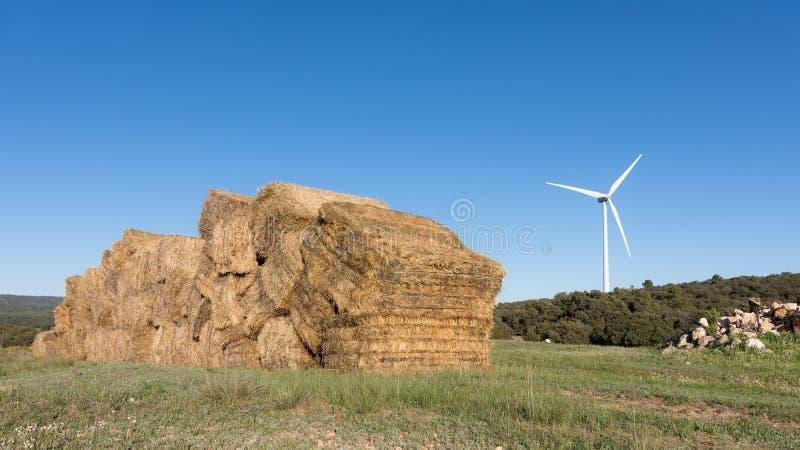 Paisaje natural del campo con las balas de paja en el primero plano, combinadas con la energía limpia de los molinoes de viento e fotografía de archivo libre de regalías