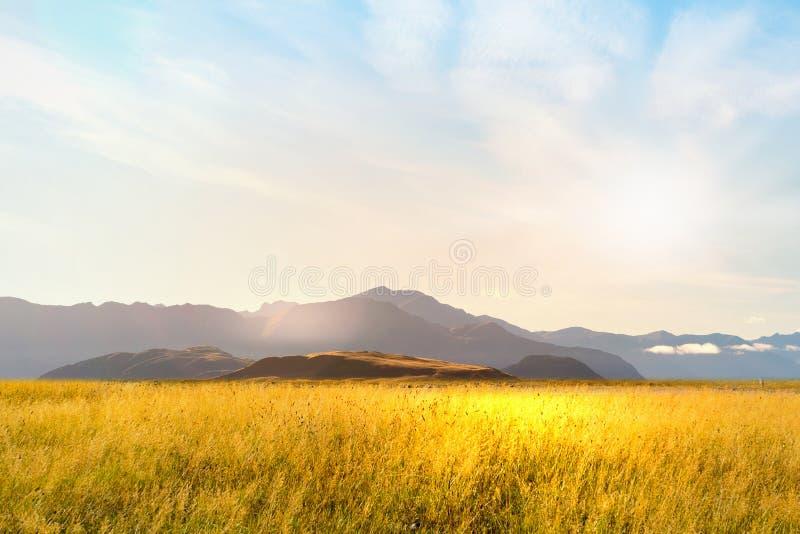 Paisaje natural del verano imagen de archivo