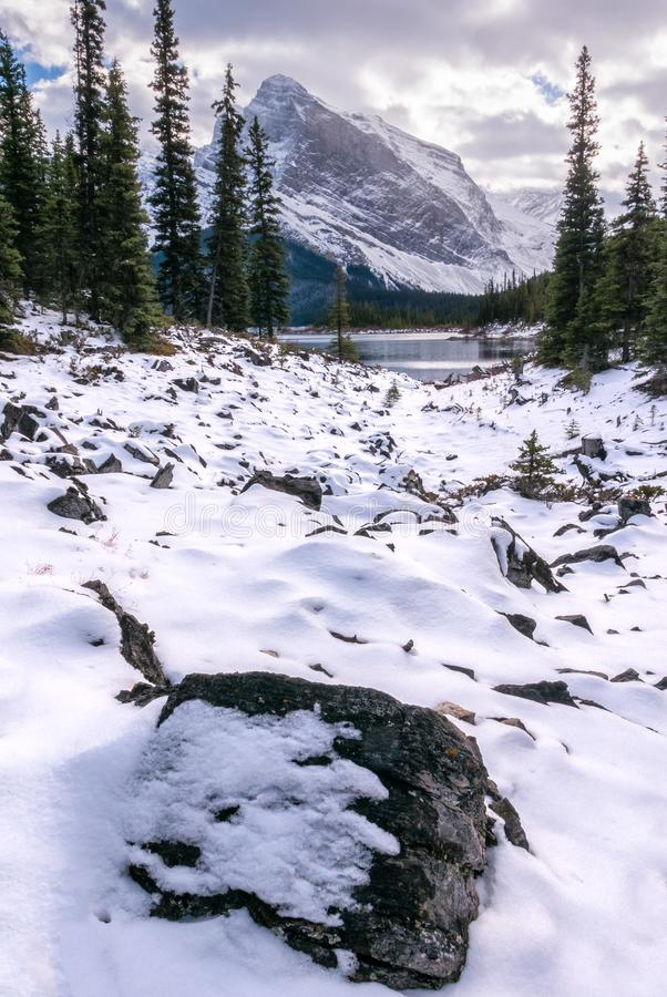Paisaje nevado en el rastro superior del lago Kananaskis en Peter Lougheed Provincial Park, Alberta foto de archivo libre de regalías